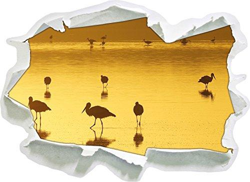 Pelikan sciame in formato adesivo acqua, carta da parati 3D: 62x45 cm decorazione della parete 3D Wall Stickers parete decalcomanie