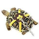 Welltobuy Guinzaglio criceto piccoli animali trazione corda per Rat Mouse Lizard Turtle Walking guinzaglio (colore casuale)