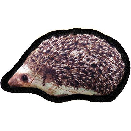 scoochie-pet-products-brawny-bruisers-rocky-hedgehog-dog-toy-8-inch