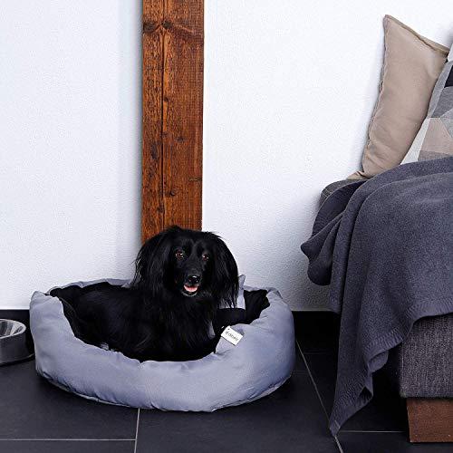 dibea DB00310 Hundebett – Hundekissen, Hundesofa abwischbar mit Wendekissen, 65 x 50 x 20 cm, schwarz/grau - 2