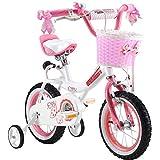 Royal Baby Princess Mädchenfahrrad mit verstellbaren, abnehmbaren Stützrädern und rosa Front-Gepäckkorb, in Reifengrößen 30,5 cm, 35,6 cm, 40,6cm, 45,7 cm oder 50,8 cm verfügbar, Rosa, rose, R BABY 16