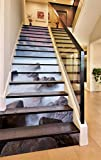 3D Wunderland Blick aufs Meer 8 Stair Risers Dekoration Fototapete Vinyl Aufkleber Tapete DE Carly (15x H:18cm x W:102cm (7