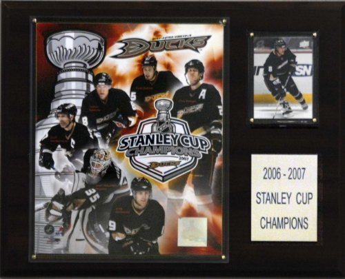 C & I Collectables NHL Enten 2006-07Stanley Cup Champions Plaque