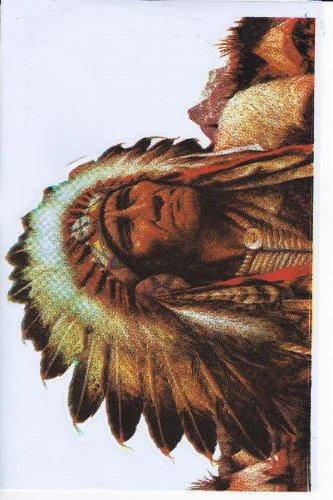 Indianer Apachen Sioux Sticker Aufkleber Folie 1 Blatt 270 mm x 180 mm wetterfest Indianer Motorrad