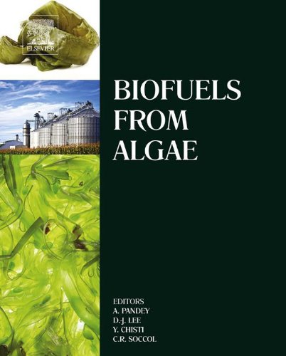 Biofuels From Algae por Ashok Pandey
