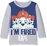 NAME IT Baby-Jungen Langarmshirt Nitpawpatrol Teddy LS Top M Mini