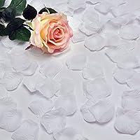 Hilai - 1000 pétalos de rosa de seda de la mejor calidad para decoración de bodas, fiestas, flores (blanco)