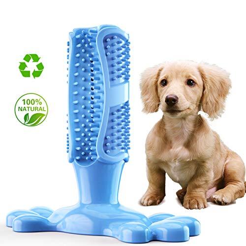 STEAPF Hundezahnbürste, Haustier Hundespielzeug Zahnzahnbürste Teddy Welpen Dekompression elastischen Gummi Backenzahn beißfest Tierspielzeug