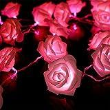 ILOVEDIY 20er LED Rosen Lichterkette batteriebetrieben
