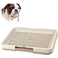 DogToilet24 in diverse misure e (Puppy Litter)