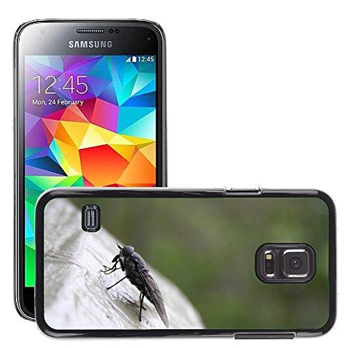 Just Phone Cover Bild Hart Handy Schwarz Schutz Case Cover Schale Etui // M00140076 Fly Tier Insekt Tier Bug // Samsung Galaxy S5 Mini SM-G800 (Fly Cover Samsung S5 Mini)