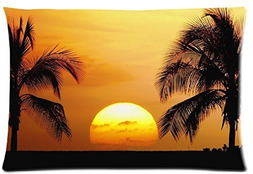 Fabulous Store Cutsom Beautiful Hawaii Sunset Palm Tree Scenery Zippered Pillow Cases Covers Standard Size 20x30(twin sides)