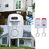 Slri PIR Bewegungsmelder Alarm Wireless Home Garage Caravan Doppelfernbedienungen