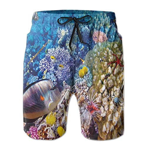 MIOMIOK Men Swim Trunks Beach Shorts,Egyptian Red Sea Bottom View with Marine Creatures Top of Tribal Ocean Scuba Image,Quick Dry 3D Printed Drawstring Casual Summer Surfing Board Shorts XXL