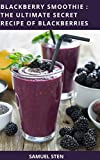 Blackberry Health And Fitness - Best Reviews Guide