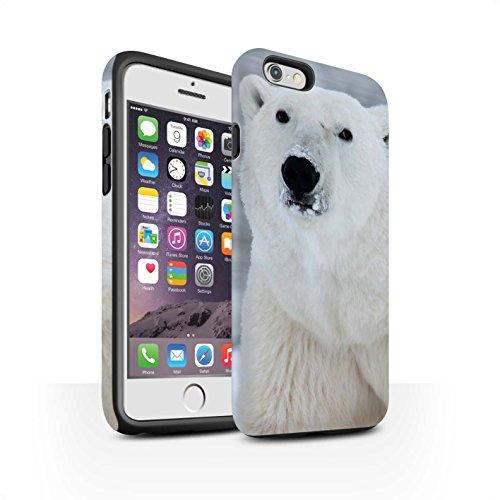 STUFF4 Matte Harten Stoßfest Hülle / Case für Apple iPhone 6 / Weiß Eisbär Muster / Arktis Tiere Kollektion Weiß Eisbär