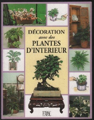 Décoration avec les plantes d'intérieur