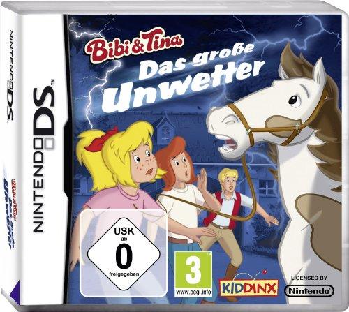 Das große Unwetter - [Nintendo DS] - Für Nintendo Ds Wort-spiele