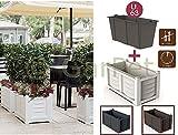 Bama Spa Pflanzkübel Raumteiler Groß Terrasse Blumenkübel Frostsicher Aussen Sichtschutz Weiß