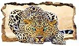Startonight, 3D Vlies Fototapete, Blaue Augen Leopard, 82 cm x 150 cm, Wandbild Tapete