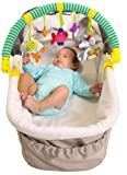 Taf Toys 10565 Spielbogen für Kinderwagen Tragetaschen