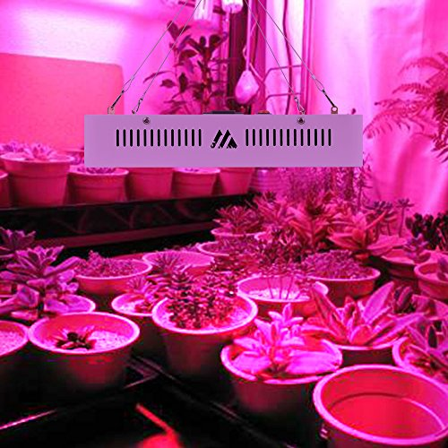 LED Grow Lampe 600W Weiß Doppel Chips Ganze Spektrum Pflanzenlampe Wachsen Lampe für Indoor Hydroponischen Garten Gewächshaus Zimmerpflanzen