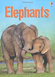 Elephants (Usborne Beginners)