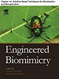 Engineered Biomimicry: Chapter 14. Solution-Based Techniques for Biomimetics and Bioreplication