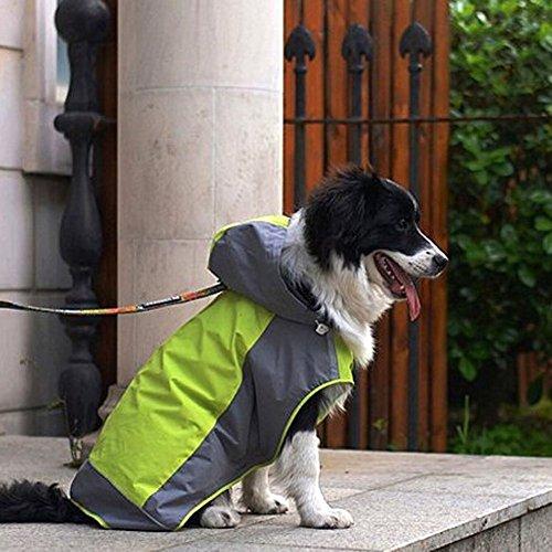 Fit Into Everyway Wasserdichte Hundejacke Hoodie 2-Layer-Design Hund Regen-Poncho hund Raincoat für mittlere bis große Hund (Grüne, M) Design Poncho