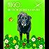 Hugo, eine schöne Zeit neigt sich dem Ende: Hundegeschichte