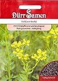 Weinraute, Ruta graveolens, ca. 100 Samen