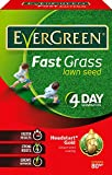 EverGreen Fast Grass Lawn Seed Carton, 2.4 kg