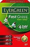 EverGreen Fast Grass Lawn Seed Carton, 2.4 kg