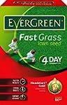 EverGreen Fast Grass Lawn Seed Carton...