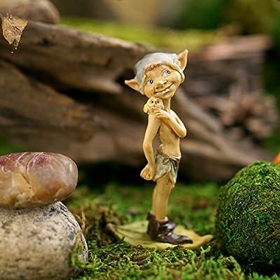 Top Collection Miniatur-Fairy Garden und Terrarium Pixie mit Figur Eule von Top Collection auf Du und dein Garten