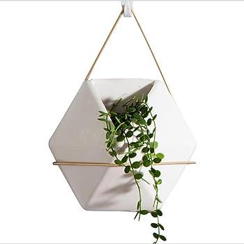 Set Pot De Fleurs A Suspendre Mural Geometrique Octogone Jardin