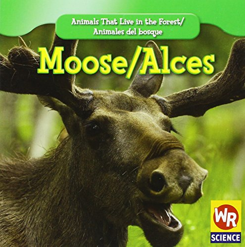 Moose/ Alces (Animals That Live in the Forest/Animales Del Bosque (Second Edition)) por JoAnn Early Macken
