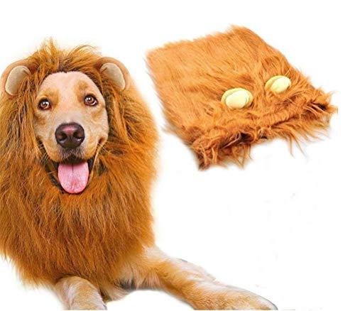 DAN Hund Löwenmähne, Urkomisch Realistisch & Lustig Halloween -