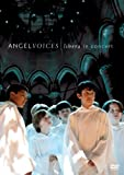 Libera - Angel Voices: Libera Live in Concert [Import anglais]