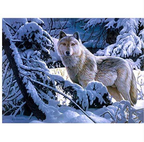 Diamant Stickerei Schnee Wolf Bohrer Diamant Malerei Mosaik Bild Kreuz Tier 30X40 cm Runde Bohrer, Runder Bohrer ()