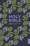 NIV Holy Bible (Hodder Classics) (New...