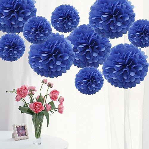 TtS 10 Pack Mixed Tissue Paper Pompoms Pom Poms Flower Wedding Party Decoration (Royal Blue)