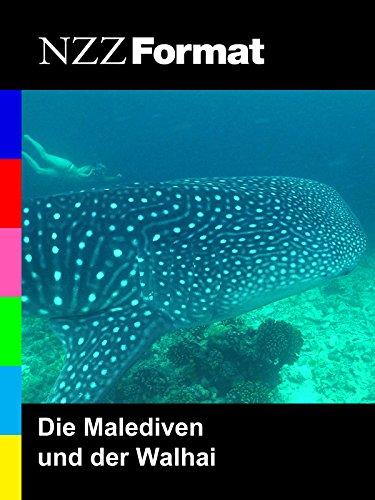 NZZ Format - Die Malediven und der Walhai*