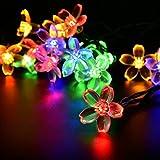 Salcar 5 Meter Solar LED Lichterkette 20 bunten Kirschblüten Deko Beleuchtung für Weihnachten, Party, Festen, 2 Leuchtmodi (RGB)