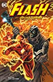 The Flash by Geoff Johns Book Six