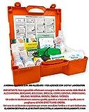 ONFARMA FARMA 4 Cassetta Medica + Cartello di Primo Pronto Soccorso per aziende con Oltre 3 Lavoratori DM 388 Allegato 1 Completa di Cartello di Primo Intervento
