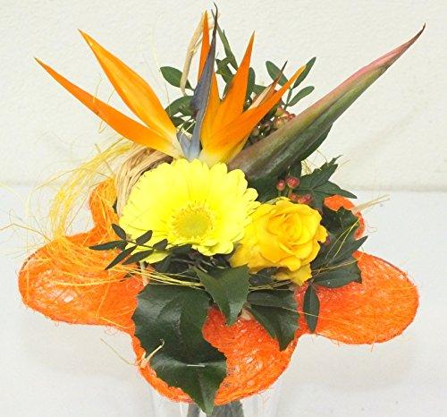 Sie erhalten bei uns einen wünderschönen Blumenstrauß zum unschlagbaren Preis in dem 1 Strelitzie, 1 Gerbera, 1 Rose, reichlich Beiwerk, Blattgrün und Deko verarbeitet ist. Außerdem fügen wir jedem Blumenstrauß kostenlos Frischhaltemittel bei