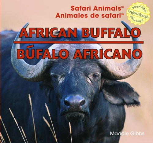 African Buffalo / Bufalo Africano (Safari Animals / Animales De Safari) por Maddie Gibbs