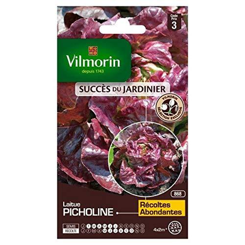 Vilmorin - Sachet graines Laitue Picholine pommée