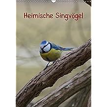 Heimische Singvögel (Wandkalender 2018 DIN A3 hoch): Bunte Vogelwelt der Gattung Passeri in der Natur und in Parkanlagen (Planer, 14 Seiten ) ... [Kalender] [Apr 01, 2017] kattobello, k.A.